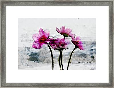 Floralitou - 1432a Framed Print by Variance Collections