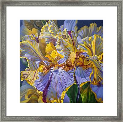 Floralscape 2 - Mauve And Yellow Irises 1 Framed Print