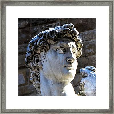 Florence, Italy  David's Head Statue Framed Print by Barbara Peonio