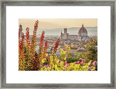 Florence In Summer Framed Print