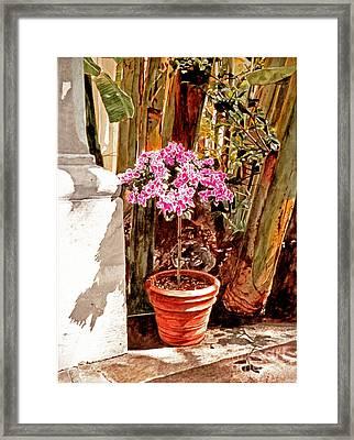 Floret Nouveau Framed Print by David Lloyd Glover
