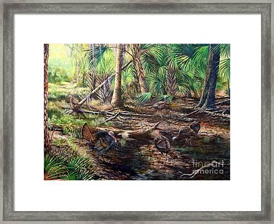Florida Backwoods- Osceola Shadows Framed Print