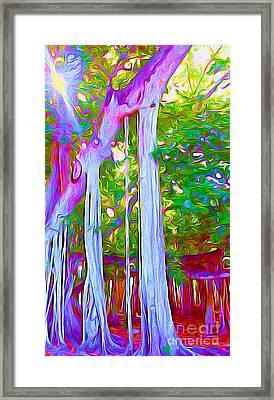Florida Banyan Tree I Framed Print by Chris Andruskiewicz