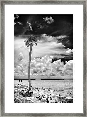 Florida Bay 6943bw Framed Print