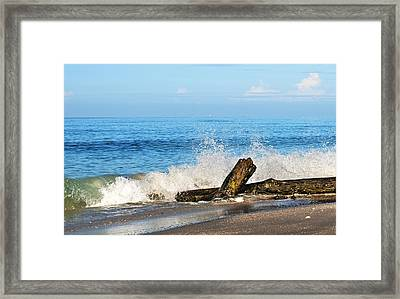 Framed Print featuring the photograph Florida Beach by Gouzel -