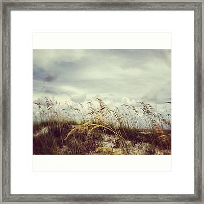 #florida #beach #sky Framed Print
