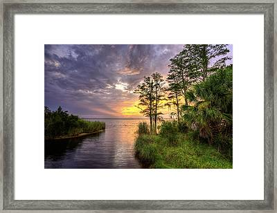 Florida Beyond The Beaches Framed Print by JC Findley