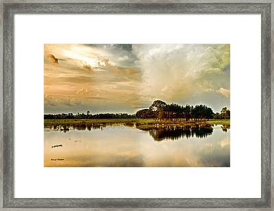 Florida Bird Pond Framed Print