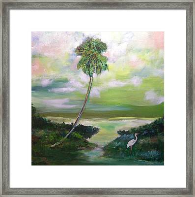 Florida Coastal Marsh Framed Print by Patricia Taylor