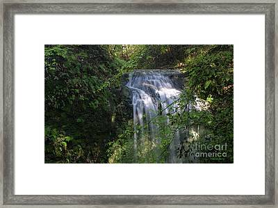 Framed Print featuring the photograph Florida Falls by Dodie Ulery