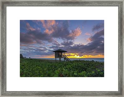 Framed Print featuring the photograph Florida by Juergen Roth