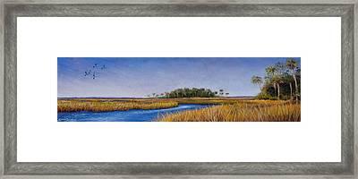 Florida Marsh In June Framed Print