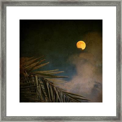 Florida Moon Framed Print by Susanne Van Hulst