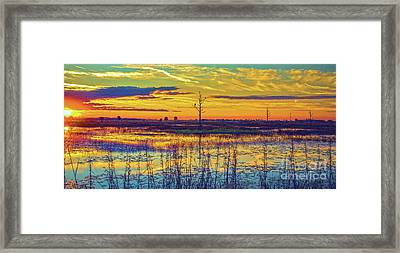 Florida Nature Paradise 2  Framed Print