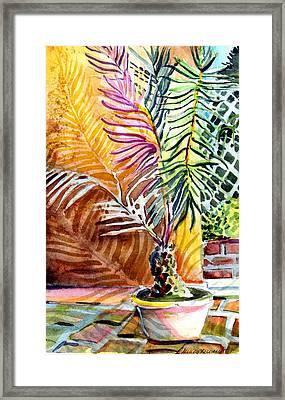 Florida Palm Tree Framed Print by Mindy Newman