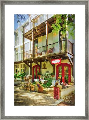 Framed Print featuring the photograph Florida Panhandle Portraits by Mel Steinhauer