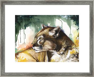 Florida Panther 2 Framed Print by Anthony Burks Sr