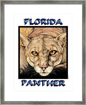 Florida Panther Framed Print