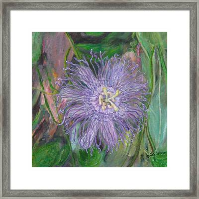 Florida Passion Flower Vine Framed Print