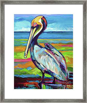 Florida Pelican Framed Print