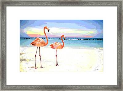 Florida Pink Flamingos Framed Print by Charles Shoup