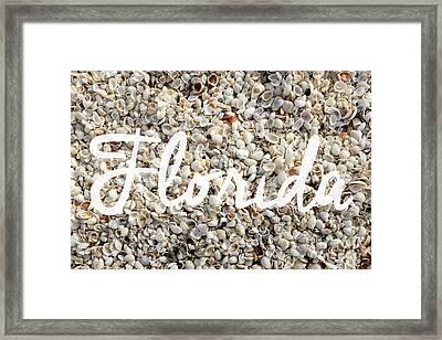 Florida Seashells Framed Print