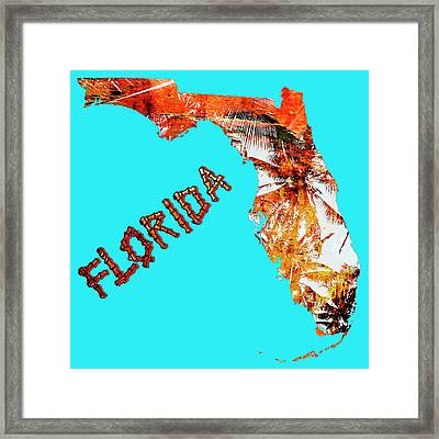 Florida Map Framed Print