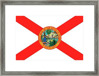 Florida State Flag Framed Print by American School