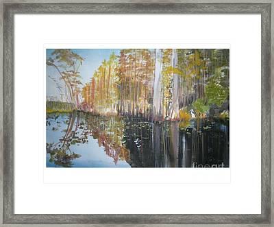 Florida Swamp Framed Print by Hal Newhouser
