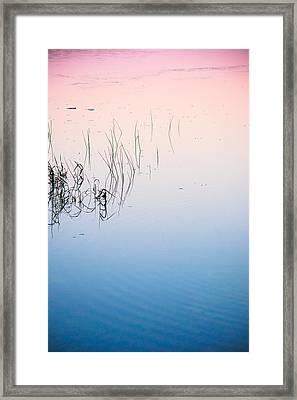 Florida Tranquility Framed Print