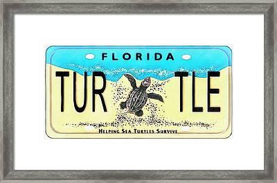 Florida Turtle License Plate Pop Art Painting Framed Print
