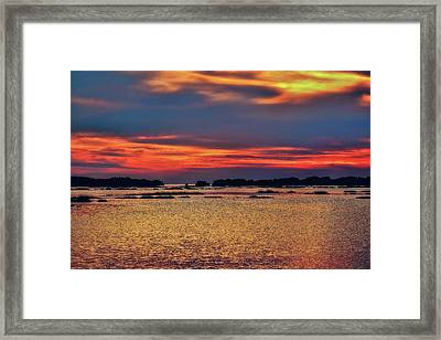 Framed Print featuring the photograph Florida West Coast  by Louis Ferreira