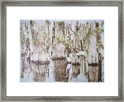 Florida Wildlife Pyrograpgic Portrait By Pigatopia Framed Print by Shannon Ivins