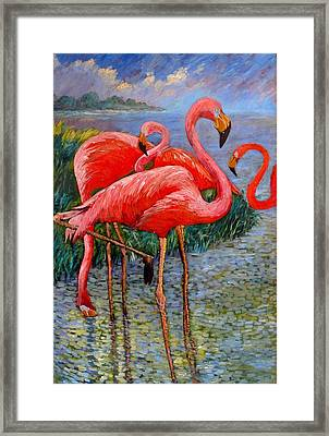 Florida's Free Flamingo's Framed Print