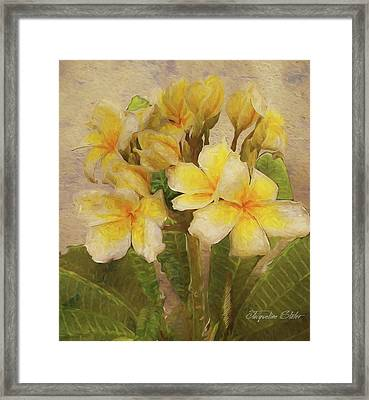 Floridian Bouquet Framed Print