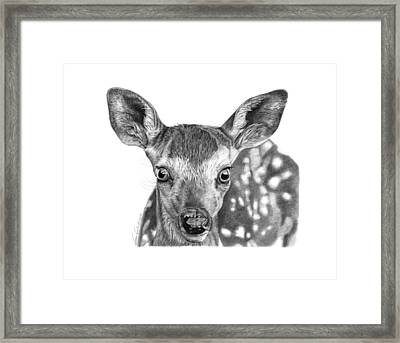 Florry The Fawn Framed Print