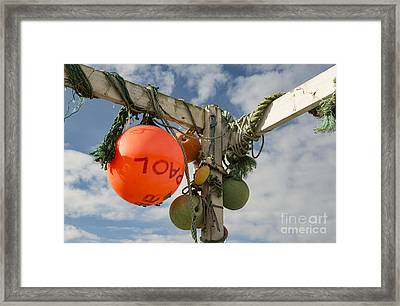 Framed Print featuring the photograph Flotsam And Jetsam by Brian Roscorla