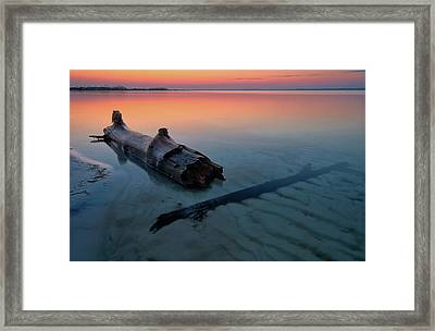 Flotsam On The Sound Framed Print by Bill Chambers