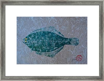 Flounder - Winter Flounder - Black Back Framed Print