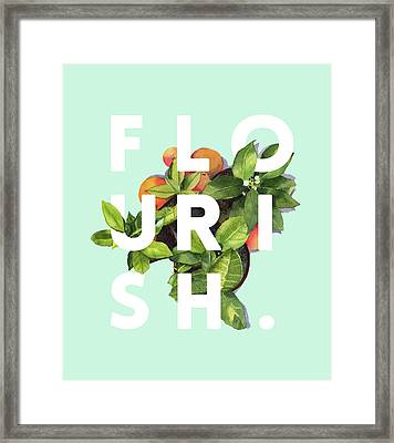 Flourish Framed Print by Uma Gokhale