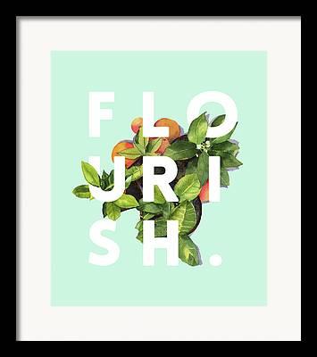 Summer Flowers Drawings Framed Prints