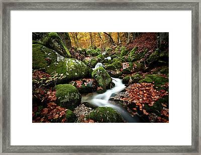 Flow Framed Print by Jorge Maia