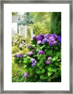 Flower - Hydrangea - Lovely Hydrangea  Framed Print by Mike Savad