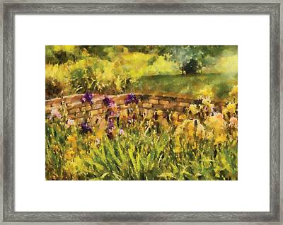 Flower - Iris - By The Bridge Framed Print by Mike Savad