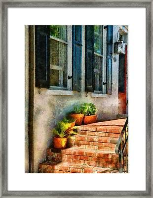 Flower - Plants - The Stoop  Framed Print