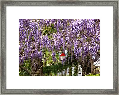 Flower - Wisteria - A House Of My Own Framed Print by Mike Savad