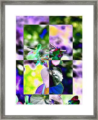 Flower 2 Framed Print by Tim Allen