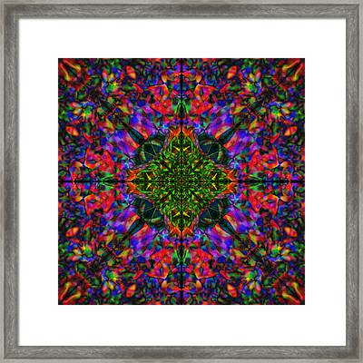 Flower Abstract 8 Framed Print by Mike McGlothlen
