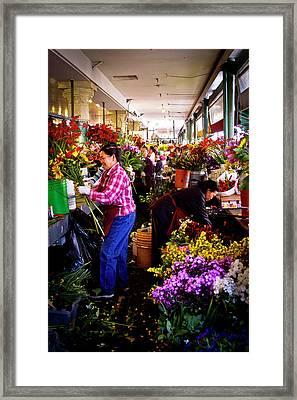 Flower Arrangers Framed Print by David Patterson
