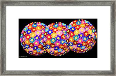 Flower Balls Framed Print